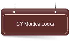Iron Mortice Locks